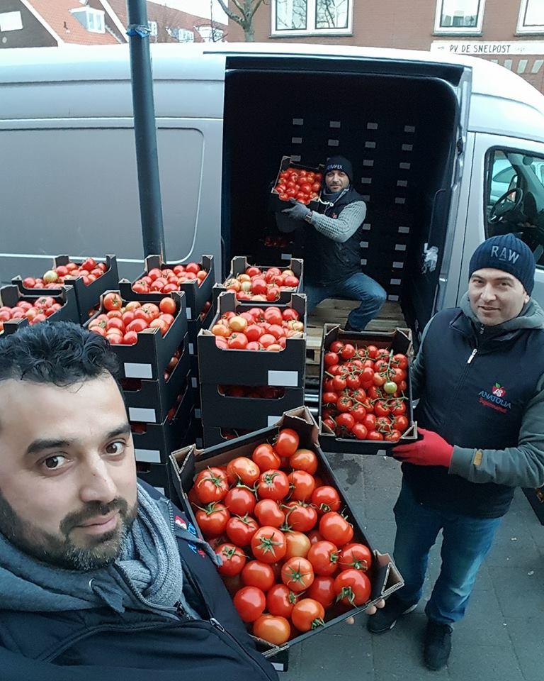 Anatolia tomaten